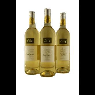 Guillaume Aurele Sauvignon Blanc Vin de Pays d'Oc Languedoc France 2016