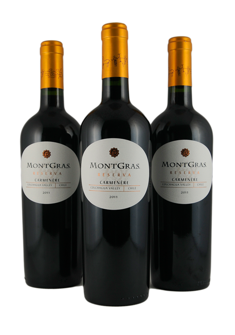 montgras export strategy for a chilean winery