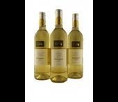Guillaume Aurele Sauvignon Blanc Vin de Pays d'Oc Languedoc France 2019